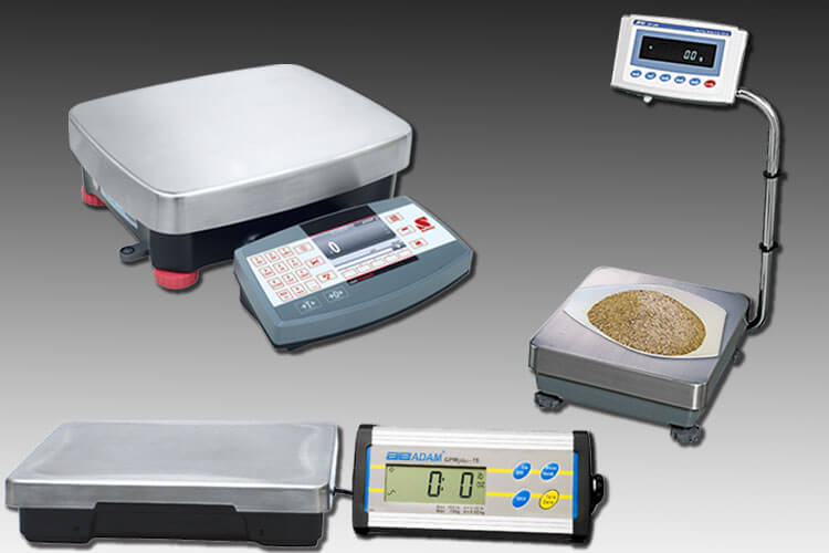 6 Features to Look for When Purchasing a Laboratory Scale